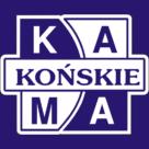 KAMA – skl. internet. w budowie